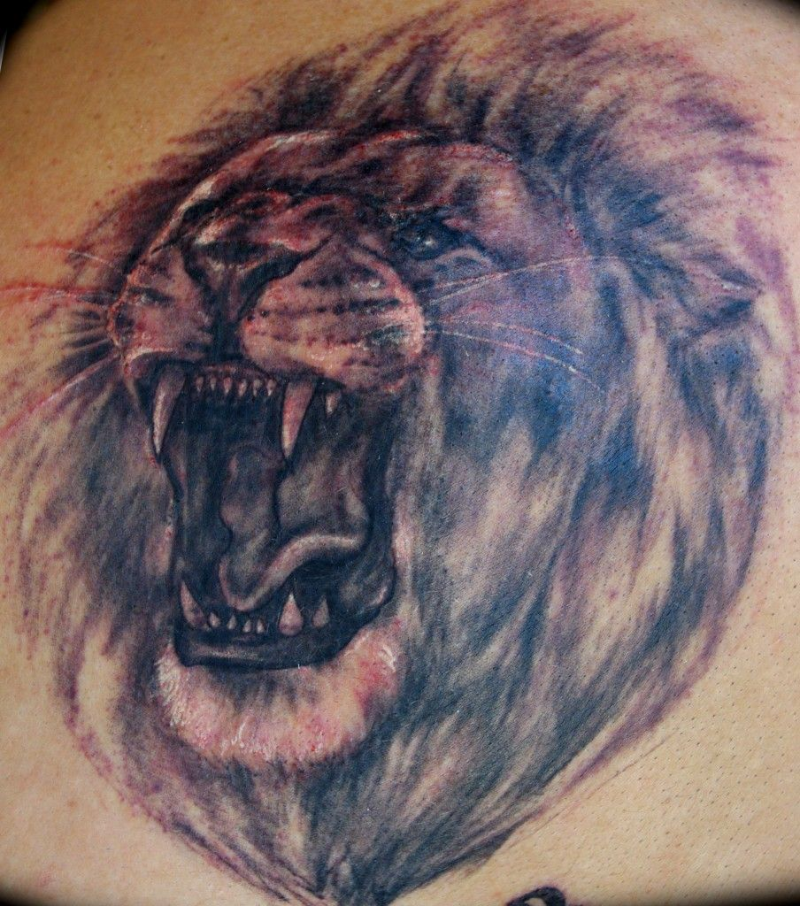Songbird tattoo created at www mrsite com - Lion Head Tribal Tattoo