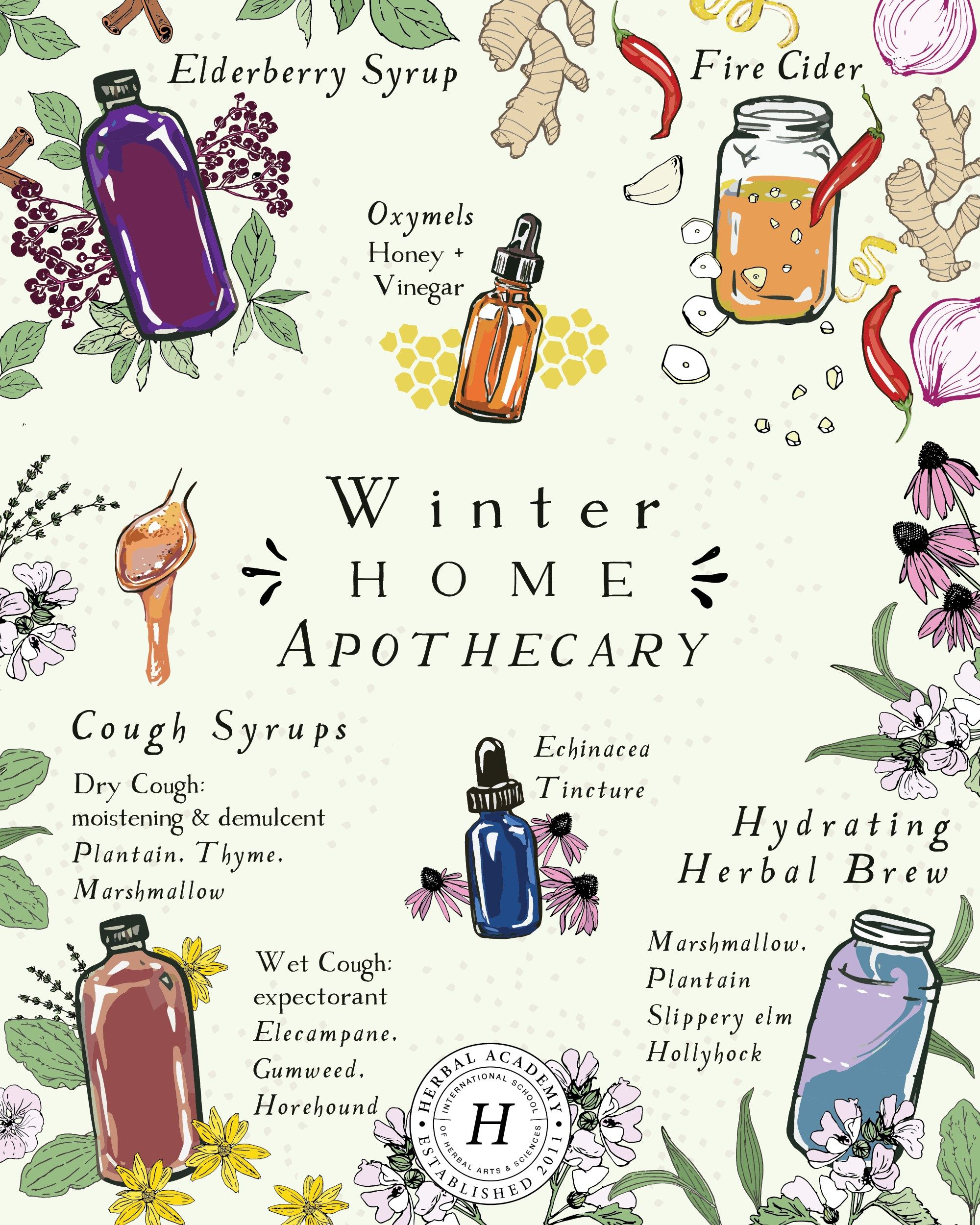 How To Stock Your Winter Home Apothecary | Herbal Academy