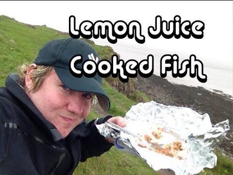 Testing the theory that lemon juice can 'cook' raw fish
