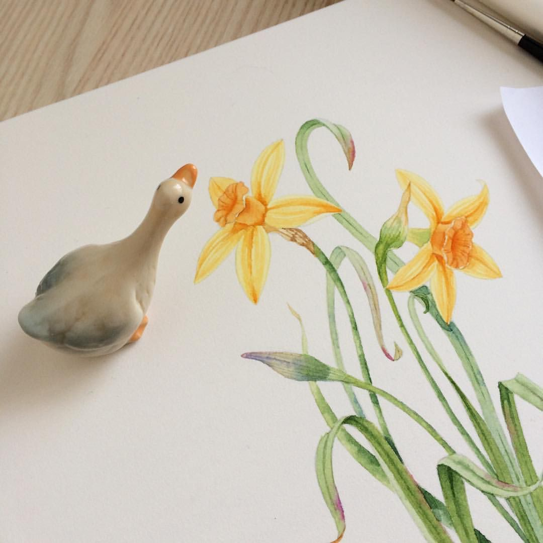 Easter watercolor painting Narcissus flower tattoos