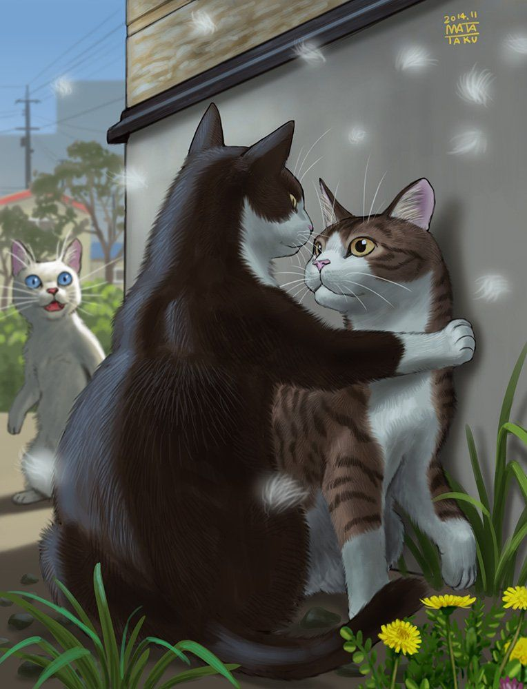 瞬く🍎 絵のお仕事募集中🍏 on Twitter | Cat art, Cat illustration, Cats