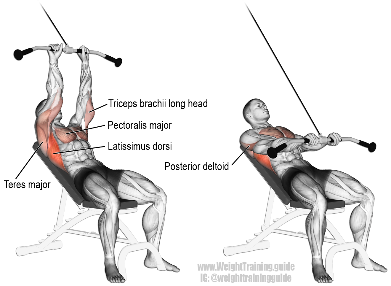 Incline straight arm pulldown. Targets your Latissimus Dorsi, while ...