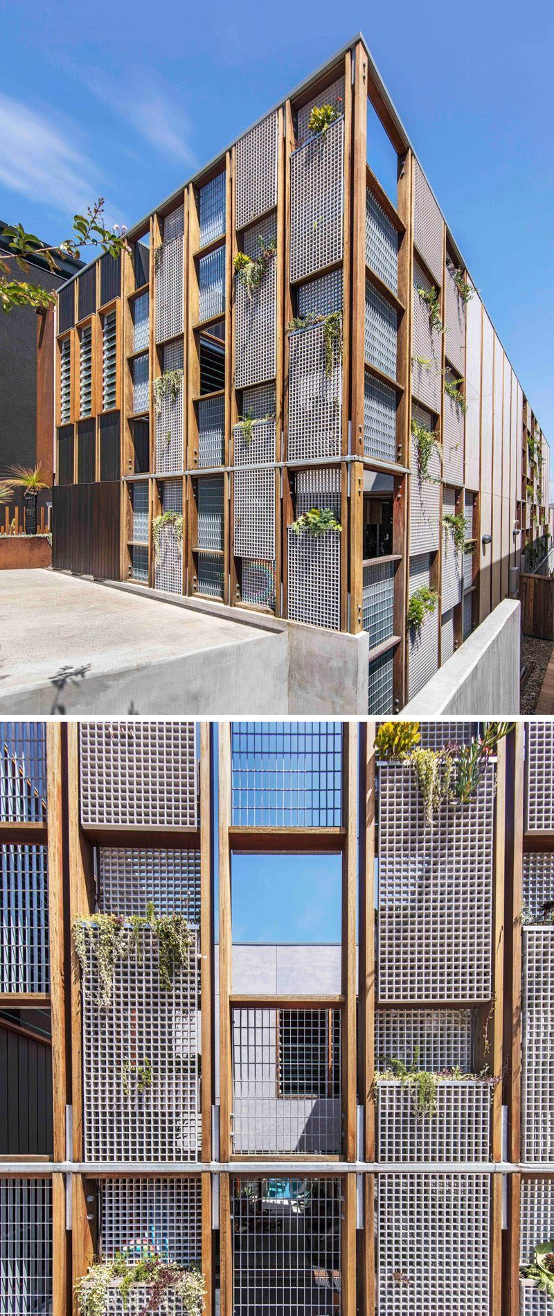 The facade of this modern house is made up of a wood grid with windows and perforated metal panels these metal panels allow for a vertical garden to be