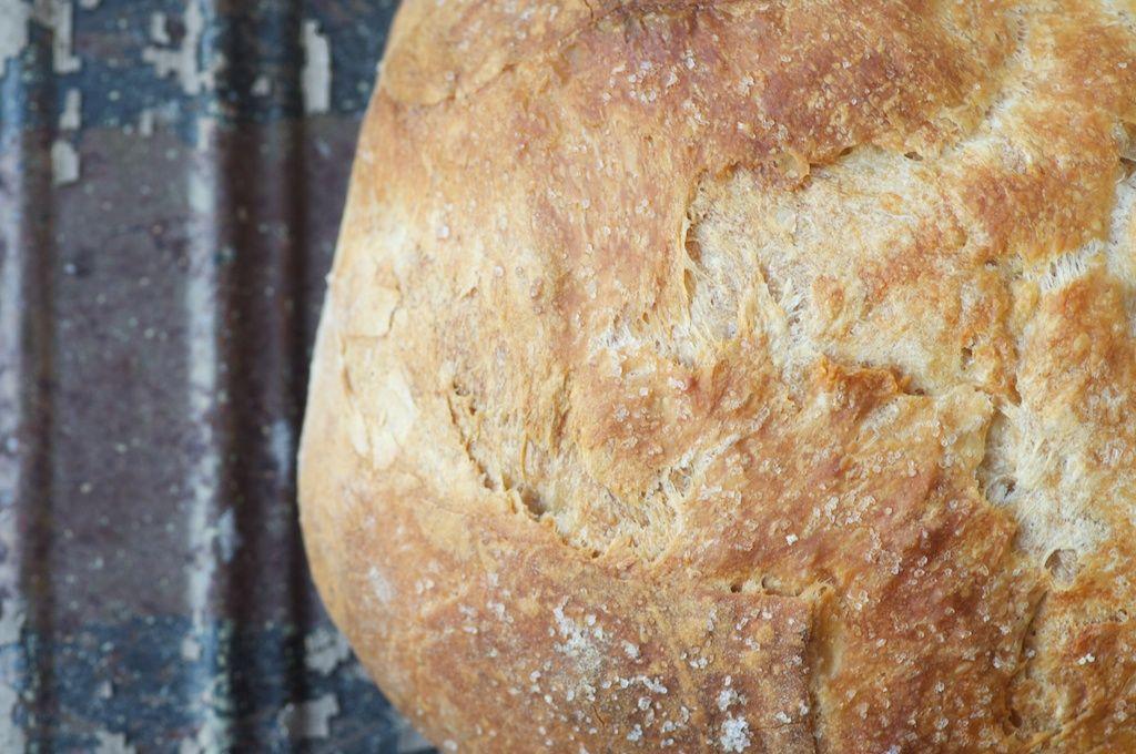 no-knead sourdough