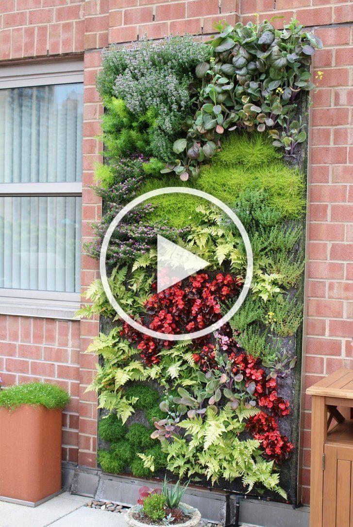 Moderne Hydroponiksysteme für Haus und Garten #Garten #Hydroponik #Moderne # Systeme – Moderne