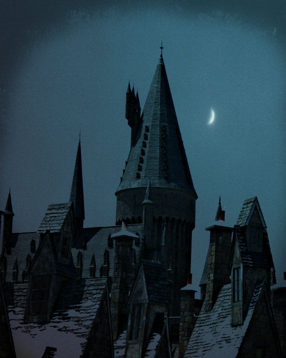 I Can T Sleep I Look Out My Window To See The Night Sky I M Startled When There Is A Loud Thump Behind Me Rp Harry Potter Castle Hogwarts Hogwarts Castle