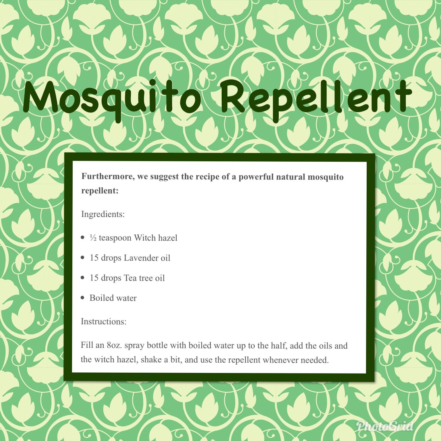 Pin by Wanda Mathews on Essential Oils Natural mosquito