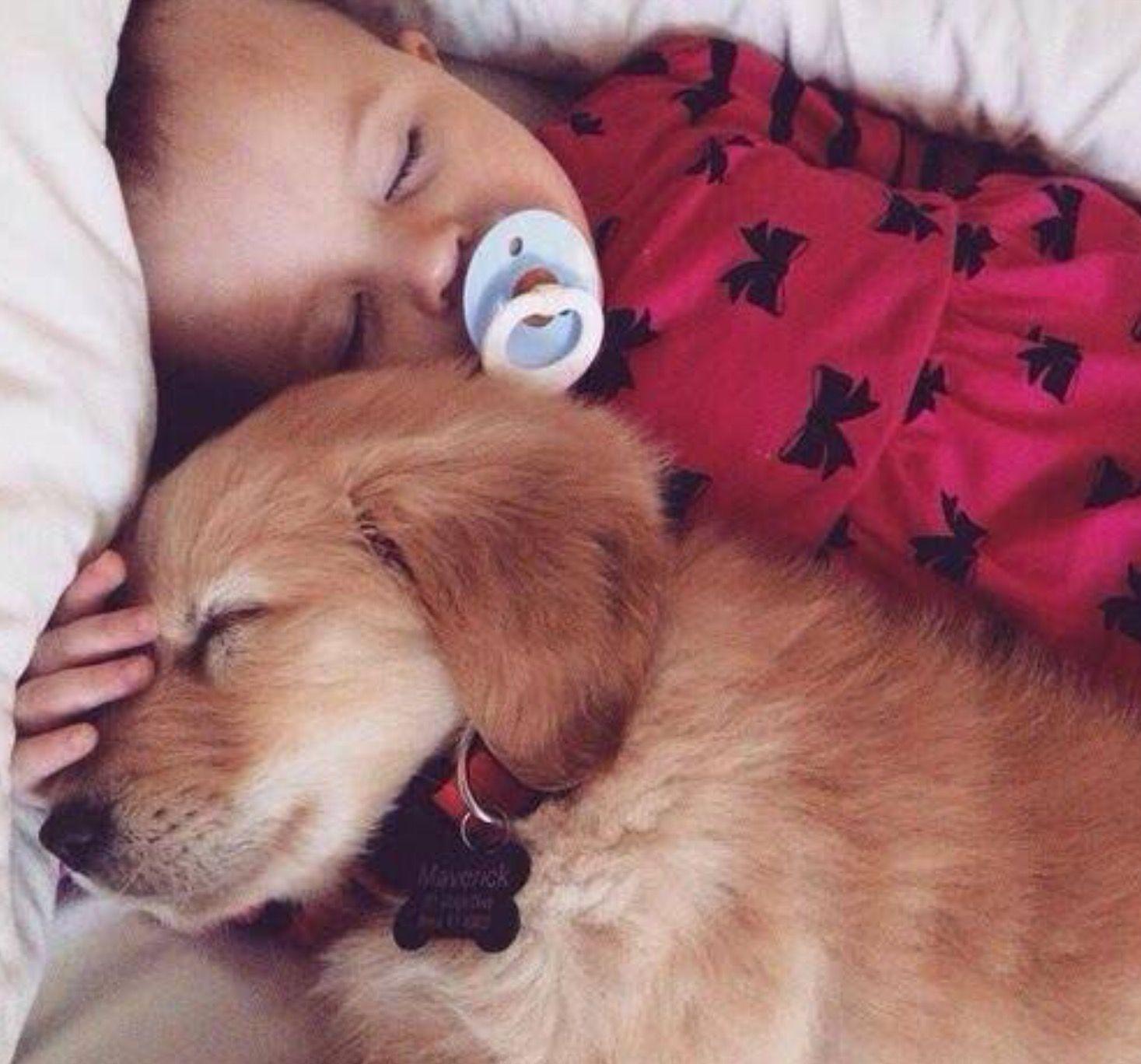 Pin Di Laura Su I Miei Dolci Dogs Children E Cute Kids