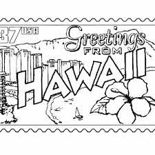 Картинки по запросу hawaiian flowers drawing for embroidery 2