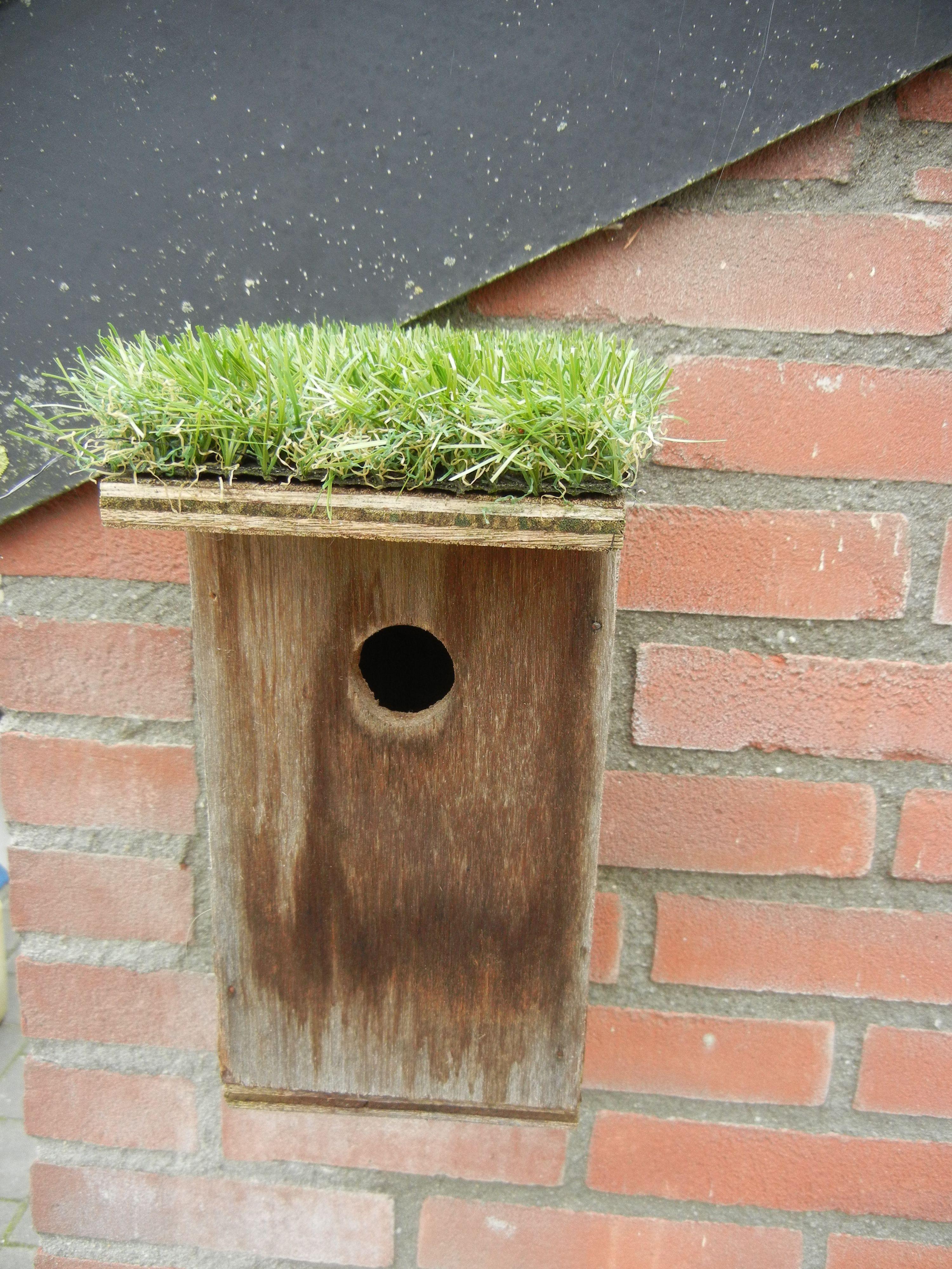 idee. Kunstgras verkrijgbaar bij Garden Sense | Garden Sense at home ...
