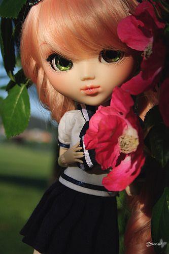 Momo | Flickr - Photo Sharing!
