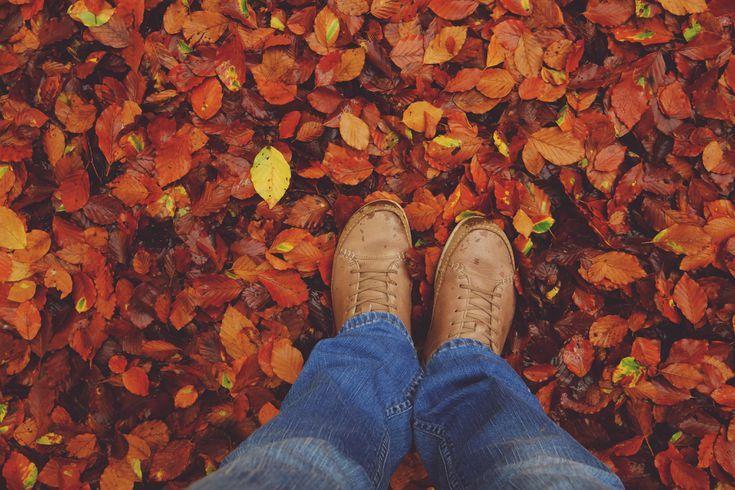 10 Ways to Celebrate Mabon, the Autumn Equinox #maboncelebration