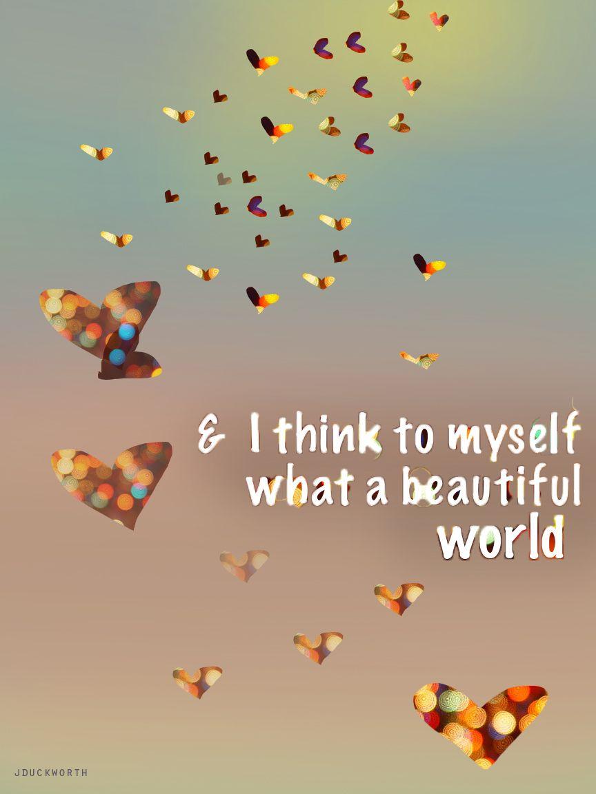 I think to myself, what a beautiful world