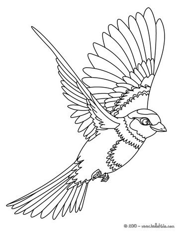 Bird coloring pages 81 free birds coloring pages birds for Flying crow coloring page