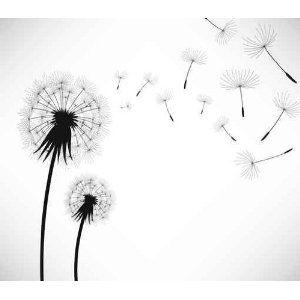 Dandelion Wind Blow Flower Wall Decal Dente De Leao Ilustracoes Tatoo