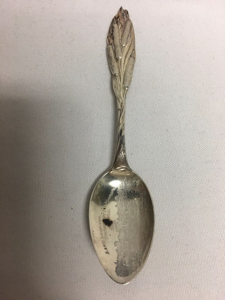 Watson Floral Series Cat O Nine Tails Sterling Souvenir Spoon Pleasant Hill  MO