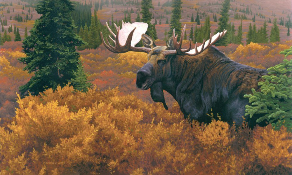 nature artists | Southeastern Wildlife Exposition | Artists | Gallery