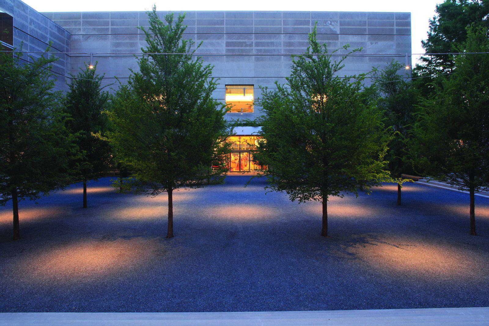 reed hilderbrand dallas museum of art