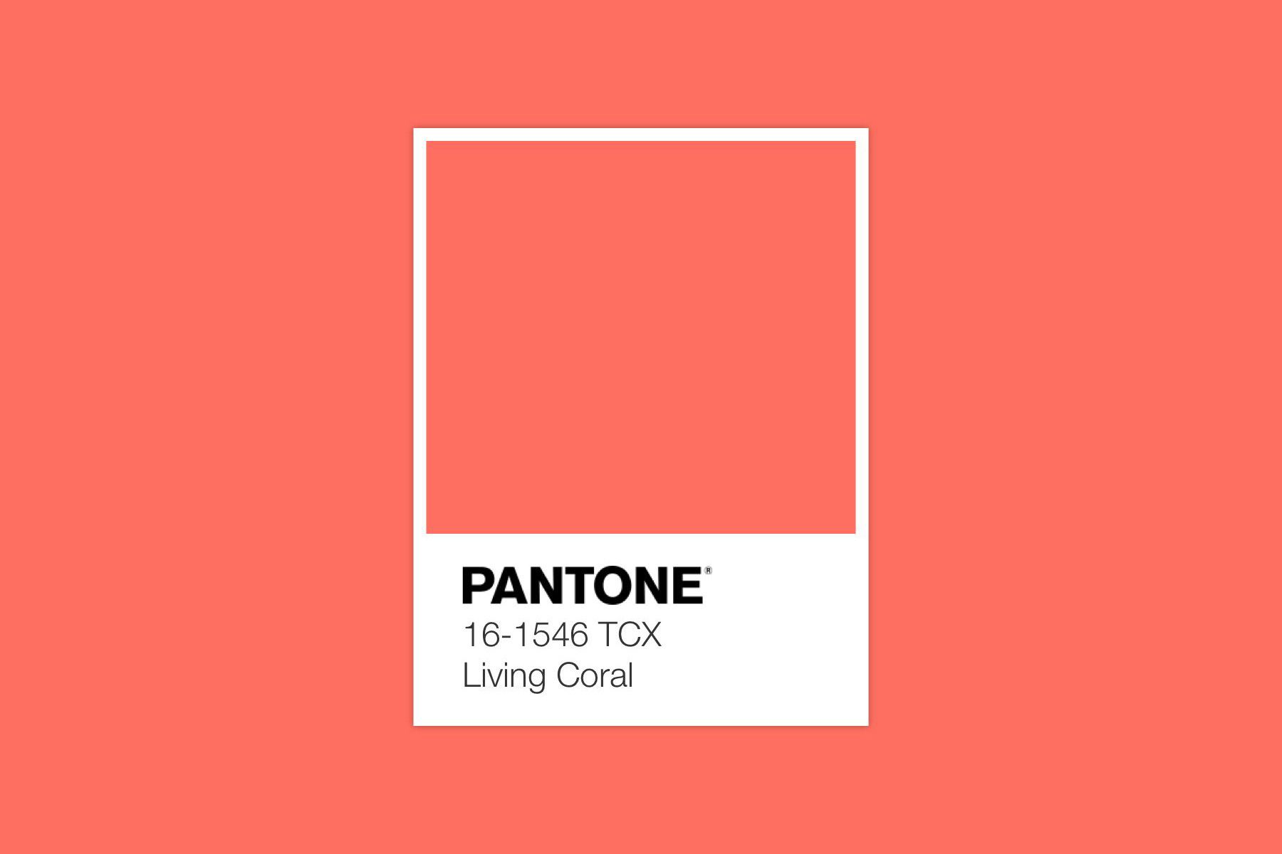 the pantone color of year 2019 is here colour palettes 2154c fashion 2018