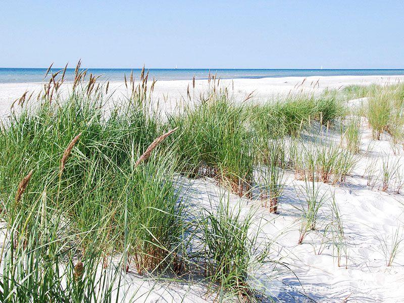 Dueodde - Bornholms schönster Sandstrand an der Südspitze der Insel. #dueodde #strand #ostsee #bornholm #insel #dänemark