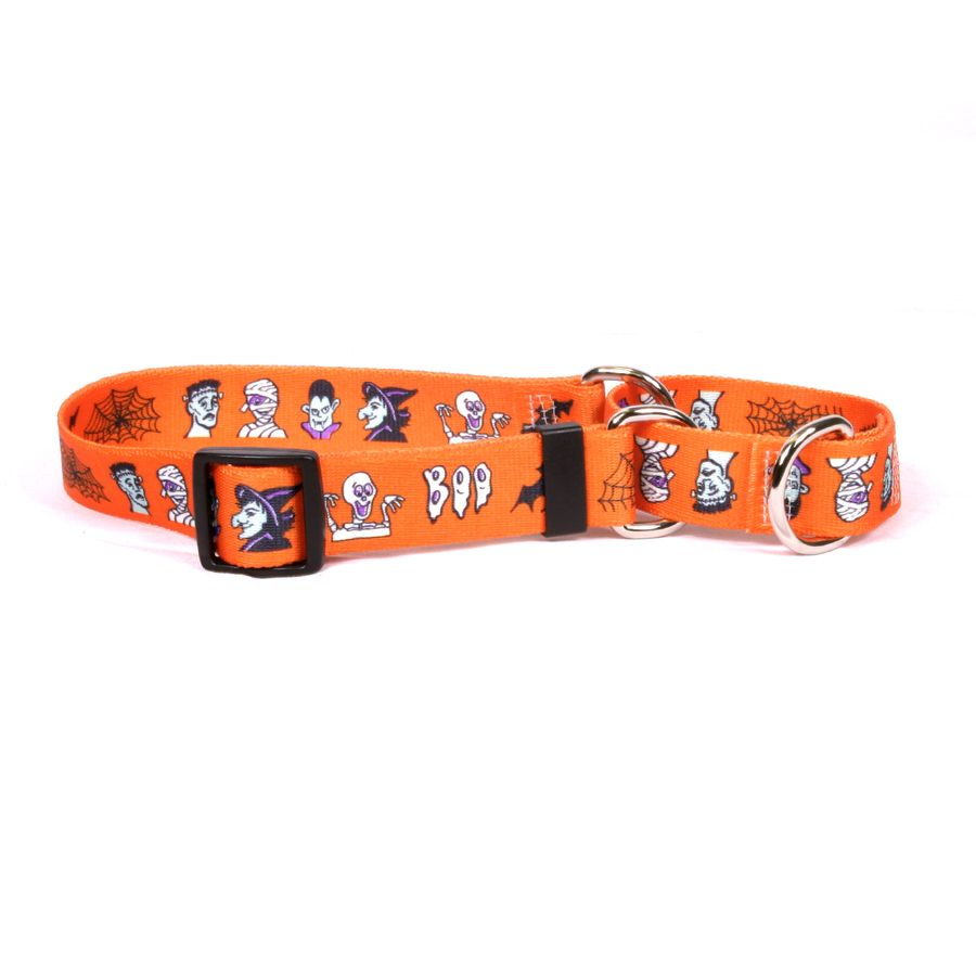 Halloween personalized martingale pet collar