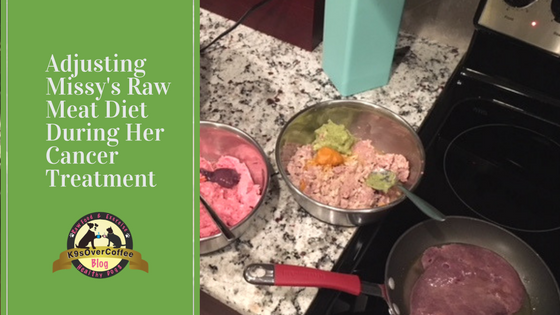 K9sOverCoffee | Adjusting Missy's Raw Meat Diet During Her Cancer Treatment