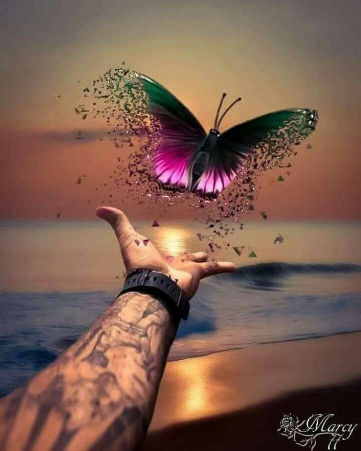 Prophetic art butterfly, freedom, fly dear one, fly! - Susi Sommer - #art #Butterfly #Dear #Fly #Freedom #Prophetic #Sommer #Susi