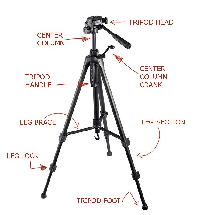 the 10 best camera tripods that crush the competition-under 50$, 100$ |  best camera, camera tripod, tripod  pinterest