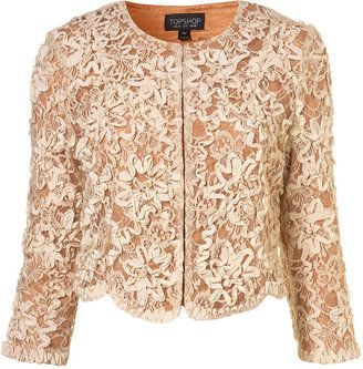 ShopStyle: Apricot Lace Embroidered Crop Jacket