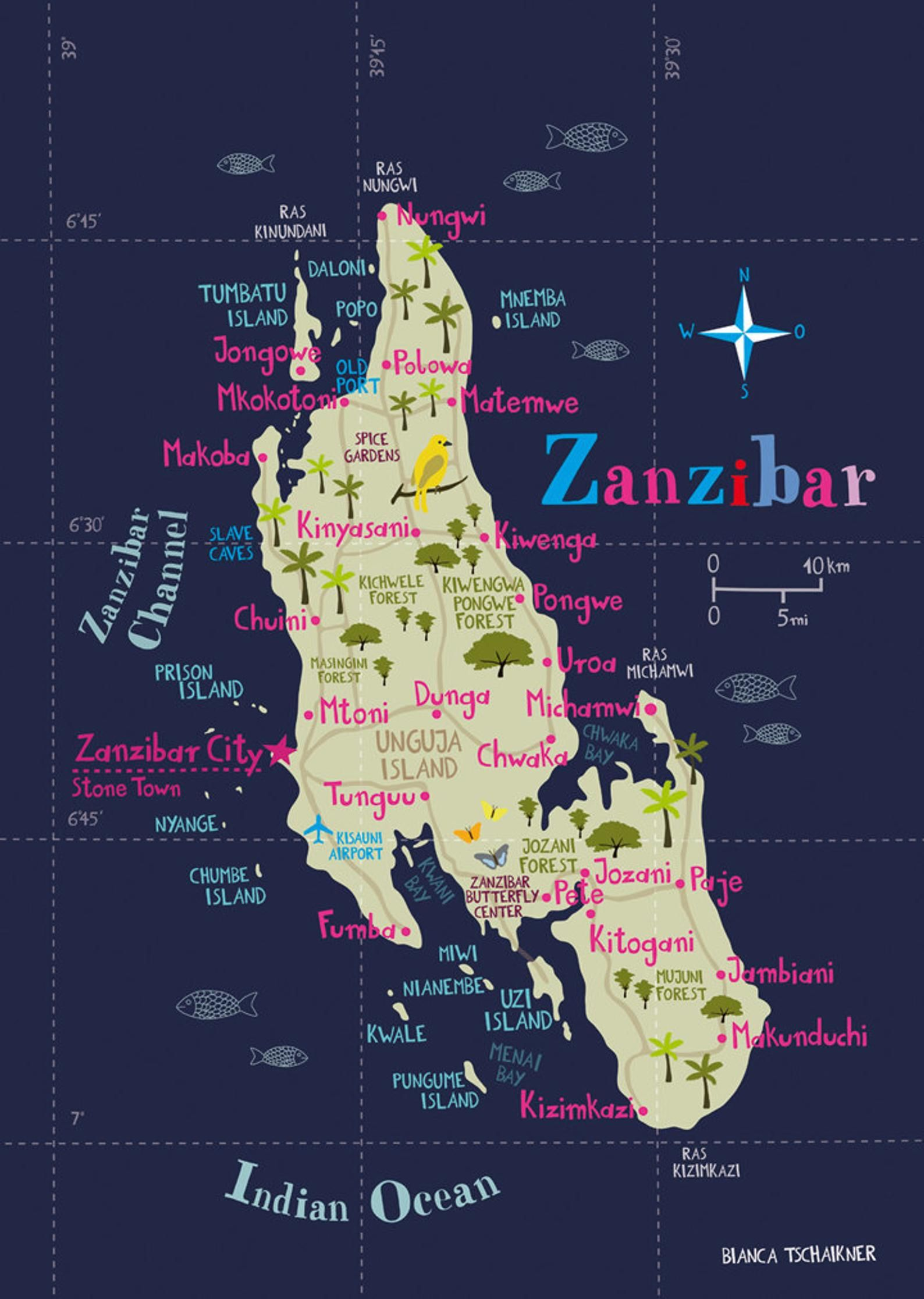 Pin On Zanzibar Travel