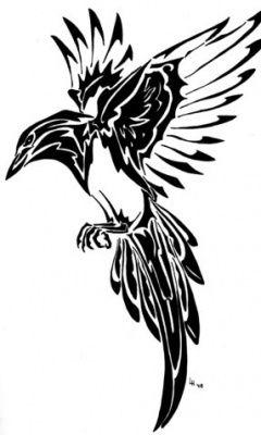 Abstract Magpie Burung Gagak Sketsa Burung