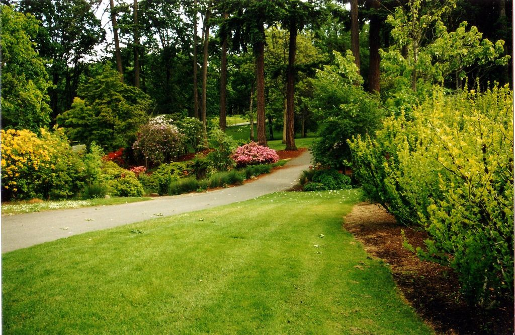 Five Awesome Places to Get Fresh Air and Exercise in Salem