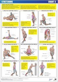 stretch chart 3  lower body  fitnessübungen