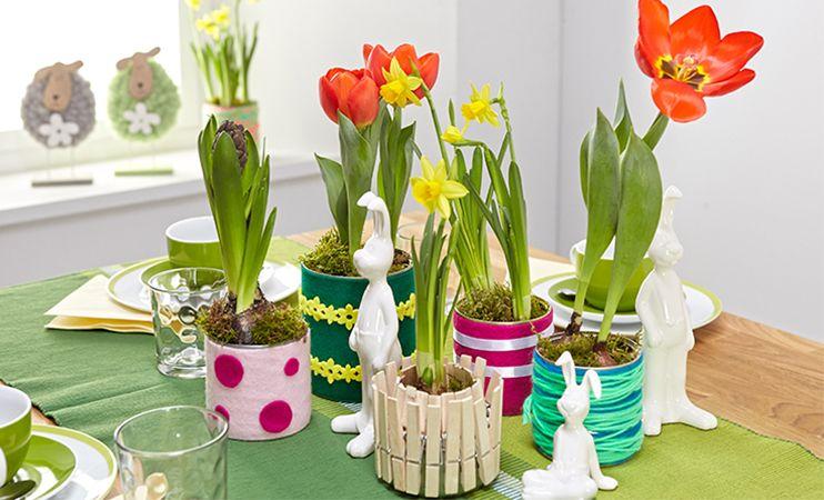 Momax Blog Konservendosen Konserven Blumentopf