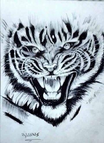 رسم نمر كرامة إشتية طفرة جوز Animal Tattoo Animals Tattoos