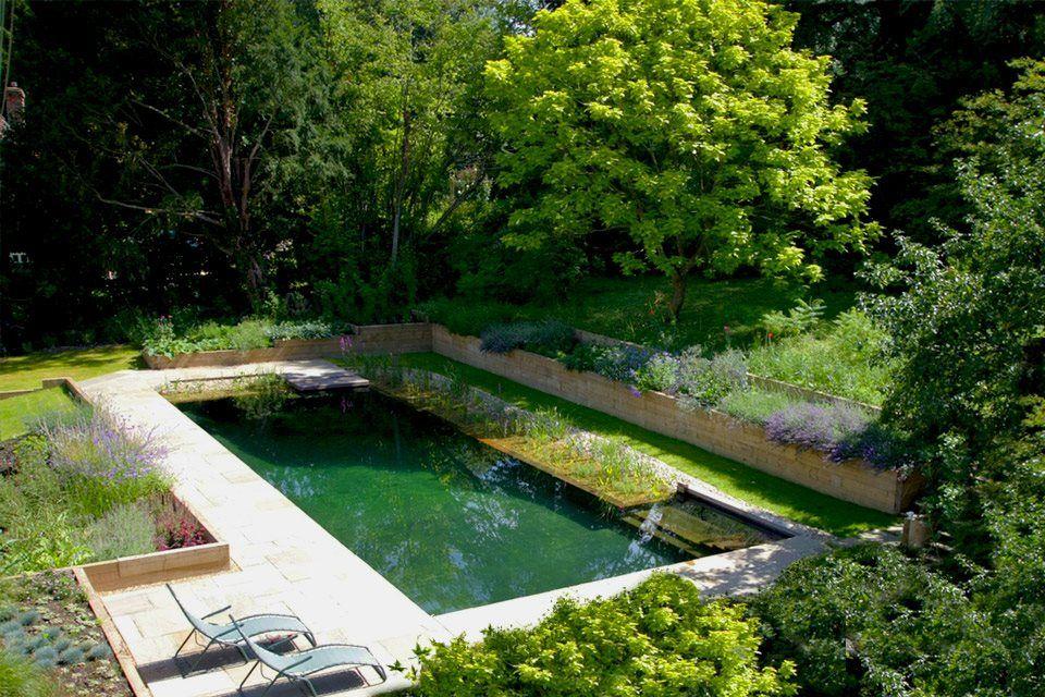 Surrey-garden-designer-natural-eco-swimming-pool-designs ...