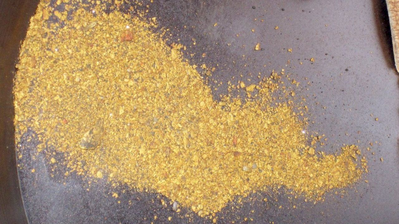 ما هو تبر الذهب Hidden Treasures Treasures How To Dry Basil