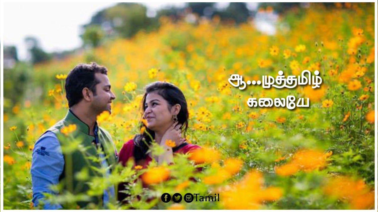 Tamilnaveen Tamil Melody Song Whatsapp Statusmuthathamizh Kaviyae Vamg Songs Saddest Songs Insta Videos