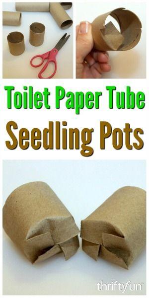 Toilet Paper Tube Seedling Pots