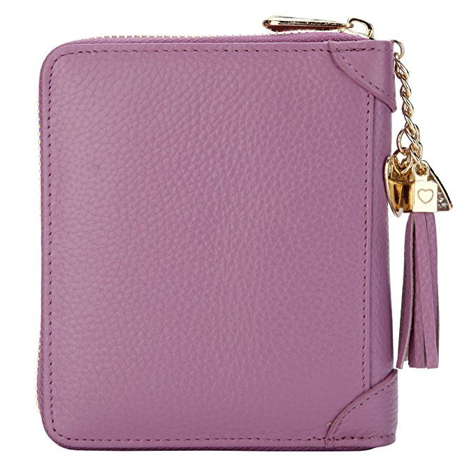 efe8f1899ef1 SafeCard Women's Credit Card Case Wallet 2 ID Window and Zipper Card ...