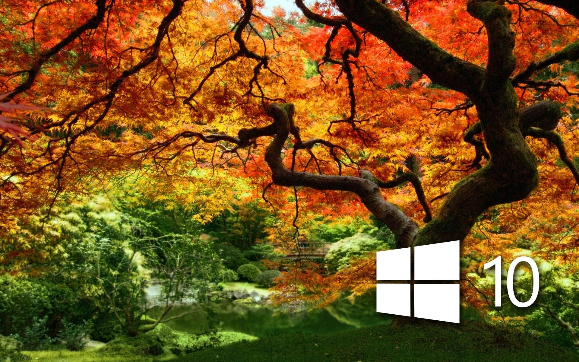 Windows 10 Wallpaper Autumn Mywallpapers Site Wallpaper Nature Wallpaper Art Wallpaper