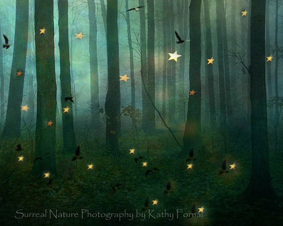 Sparkly Magical Girl Wallpaper Nature Photography Green Forest Woodlands Twinkling