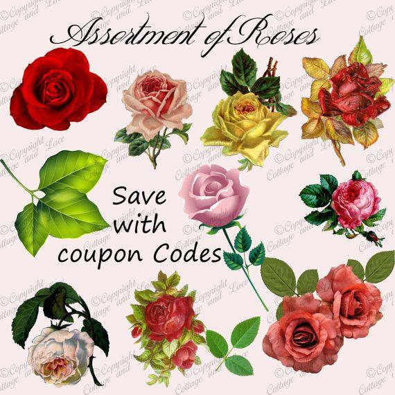 Digital Roses: Scrapbook supplies, Digital Embellishments, Commercial Use, Digital Paper Sale P 81a