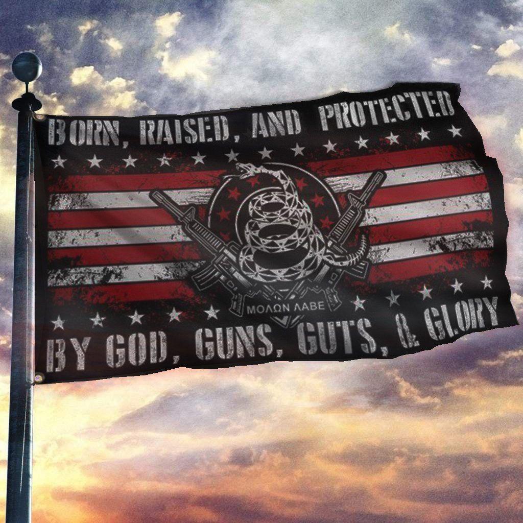Born Raised And Protected By God Guns Guts And Glory 2nd Amendment Flag 2nd Amendment Glory American Flag