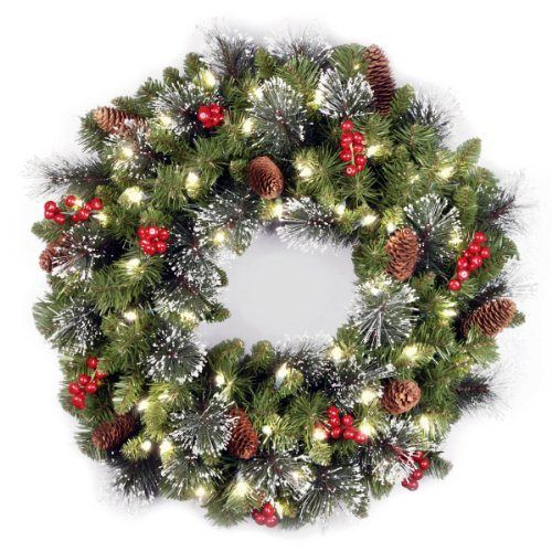 National Tree 24-Inch Crestwood Spruce Wreath with Silver Bristle