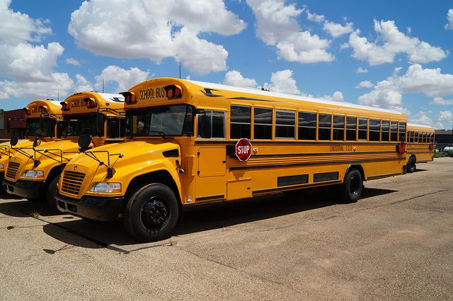 Christoval Isd Blue Bird Vision School Bus With Images School