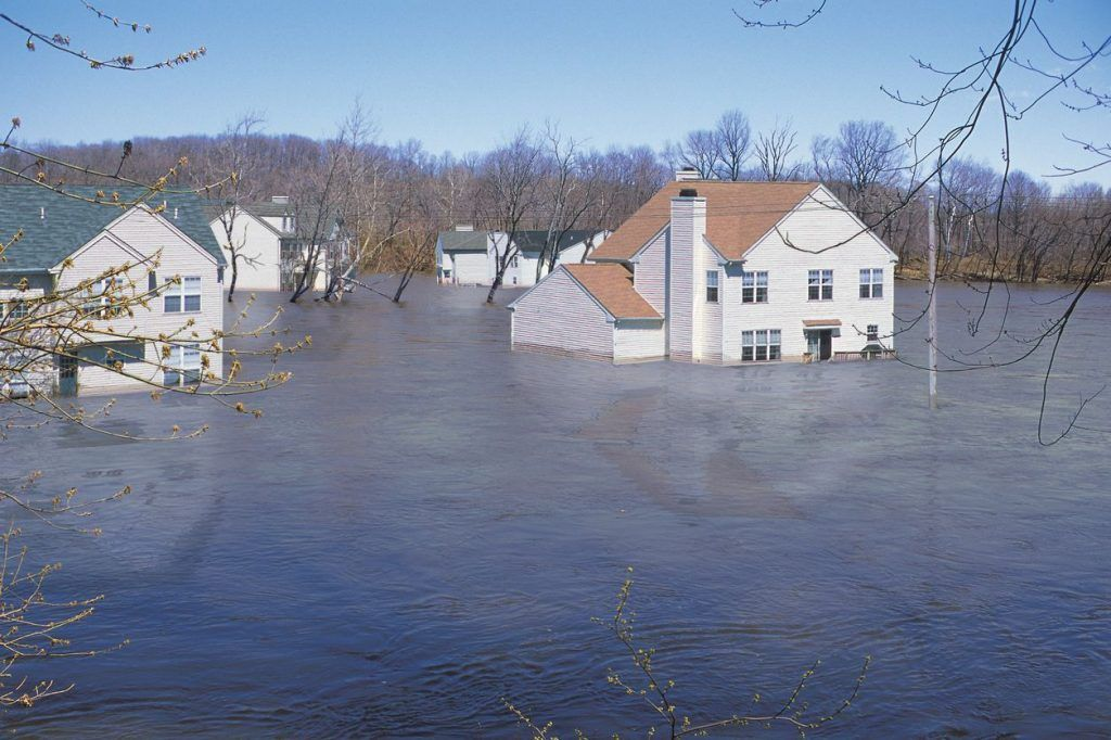 Writing a Flood Insurance Claim Letter for Damaged Goods