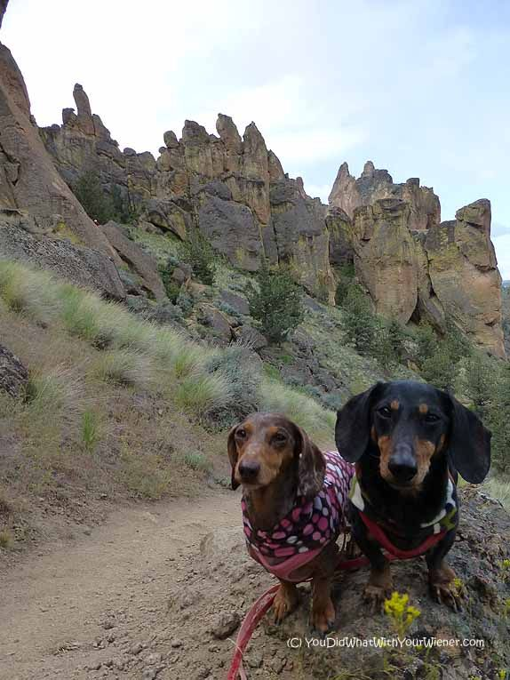 Hiking Misery Ridge at Dog Friendly Smith Rock State Park