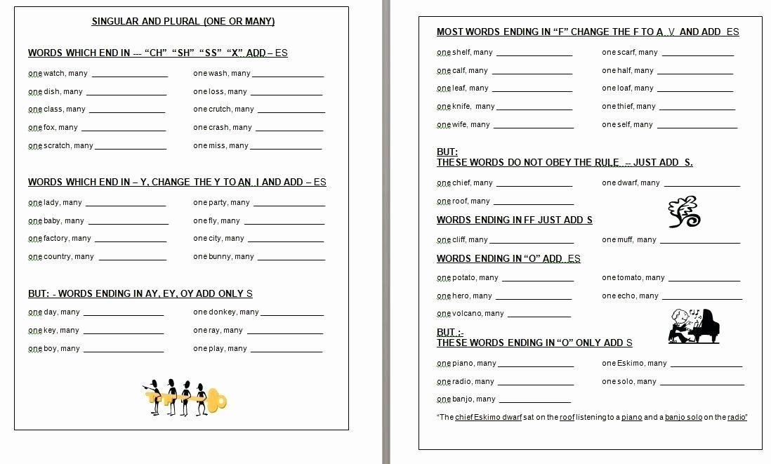Plurals worksheet 3rd grade singular plural worksheets for