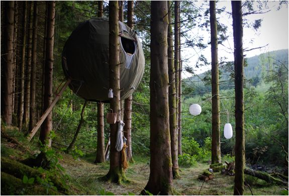 TREE TENTS | BY LUMINAIR | Image